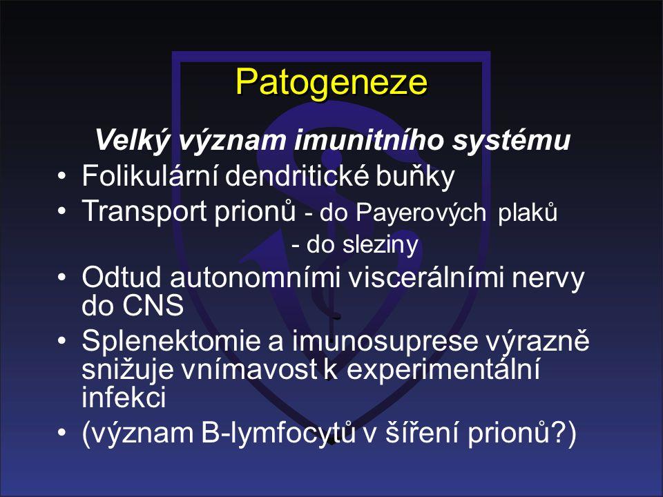 Patogeneze Velký význam imunitního systému Folikulární dendritické buňky Transport prionů - do Payerových plaků - do sleziny Odtud autonomními viscerálními nervy do CNS Splenektomie a imunosuprese výrazně snižuje vnímavost k experimentální infekci (význam B-lymfocytů v šíření prionů?)