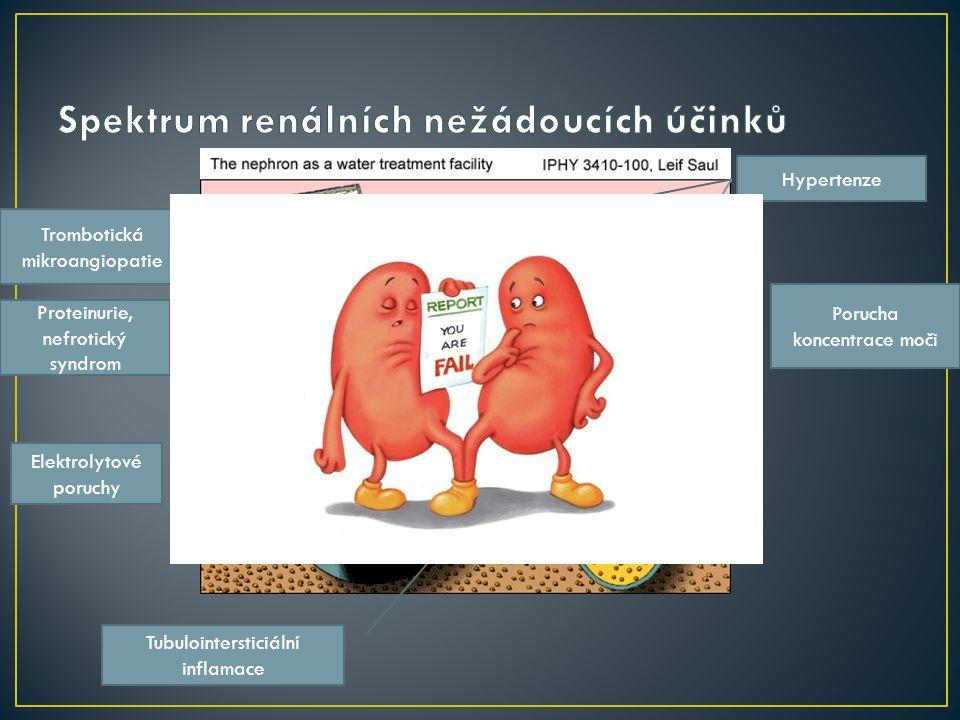 Proteinurie, nefrotický syndrom Elektrolytové poruchy Tubulointersticiální inflamace Porucha koncentrace moči Hypertenze Trombotická mikroangiopatie