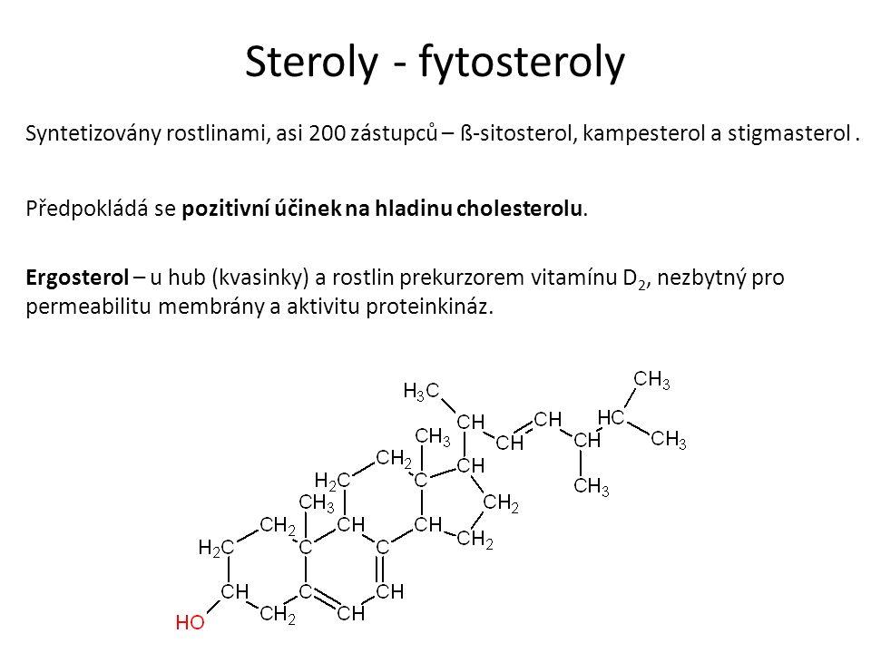 Steroly - fytosteroly Syntetizovány rostlinami, asi 200 zástupců – ß-sitosterol, kampesterol a stigmasterol. Předpokládá se pozitivní účinek na hladin