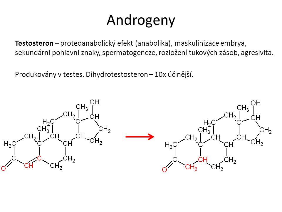 Androgeny Testosteron – proteoanabolický efekt (anabolika), maskulinizace embrya, sekundární pohlavní znaky, spermatogeneze, rozložení tukových zásob, agresivita.