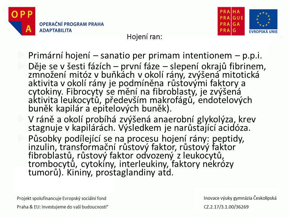 Hojení ran:  Primární hojení – sanatio per primam intentionem – p.p.i.