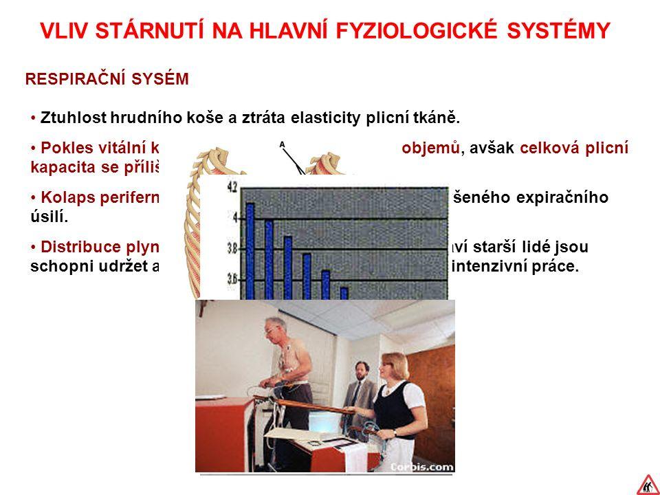 VLIV STÁRNUTÍ NA HLAVNÍ FYZIOLOGICKÉ SYSTÉMY RESPIRAČNÍ SYSÉM Ztuhlost hrudního koše a ztráta elasticity plicní tkáně.