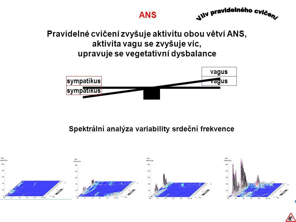 ANS Pravidelné cvičení zvyšuje aktivitu obou větví ANS, aktivita vagu se zvyšuje víc, upravuje se vegetativní dysbalance sympatikusvagus sympatikus Spektrální analýza variability srdeční frekvence