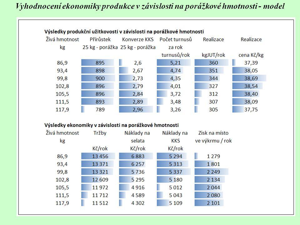Vyhodnocení ekonomiky produkce v závislosti na porážkové hmotnosti - model