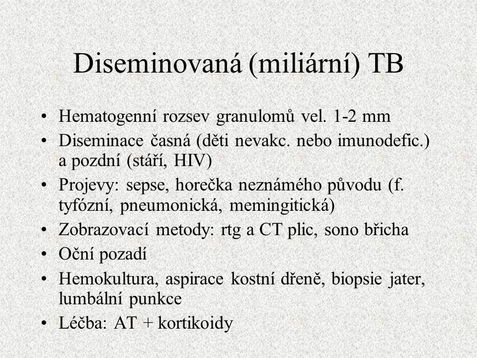 Diseminovaná (miliární) TB Hematogenní rozsev granulomů vel.