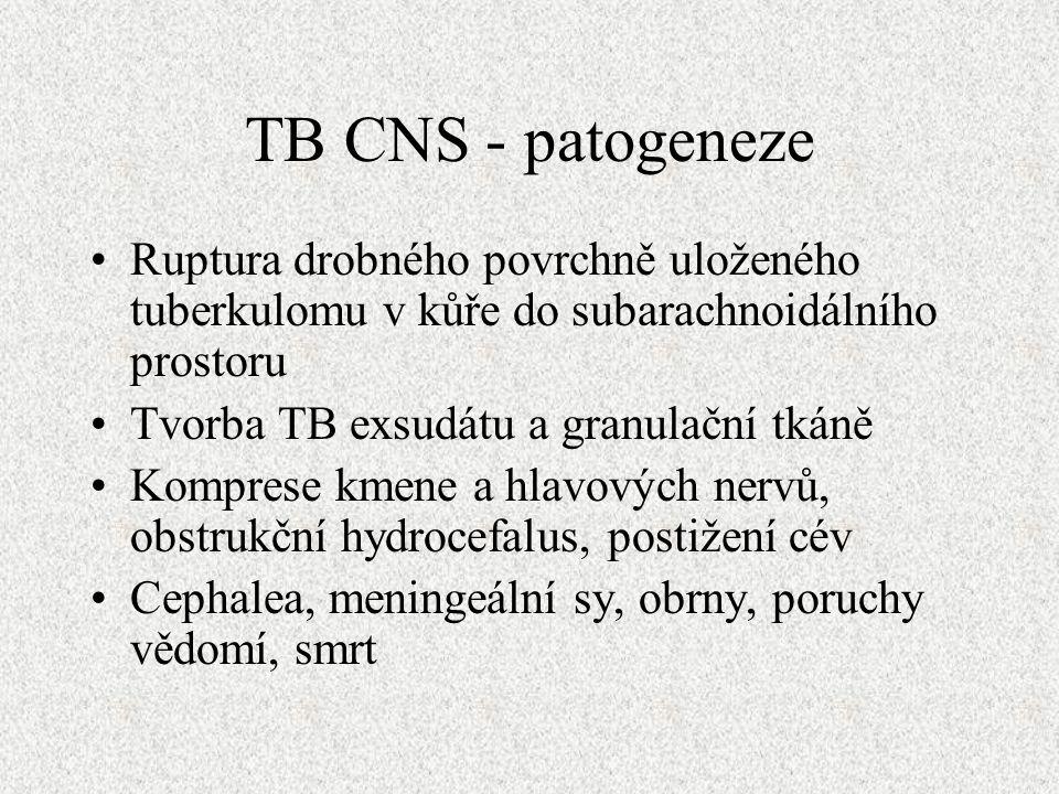 TB CNS - patogeneze Ruptura drobného povrchně uloženého tuberkulomu v kůře do subarachnoidálního prostoru Tvorba TB exsudátu a granulační tkáně Komprese kmene a hlavových nervů, obstrukční hydrocefalus, postižení cév Cephalea, meningeální sy, obrny, poruchy vědomí, smrt