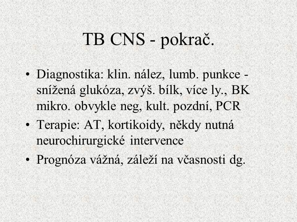 TB CNS - pokrač. Diagnostika: klin. nález, lumb.