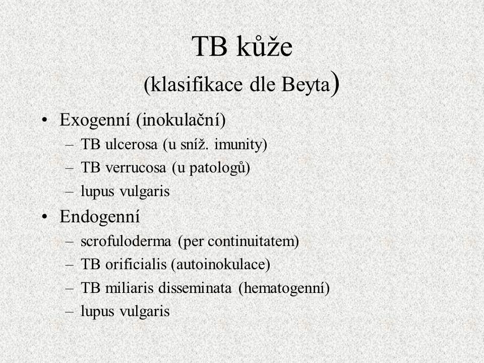 TB kůže (klasifikace dle Beyta ) Exogenní (inokulační) –TB ulcerosa (u sníž.