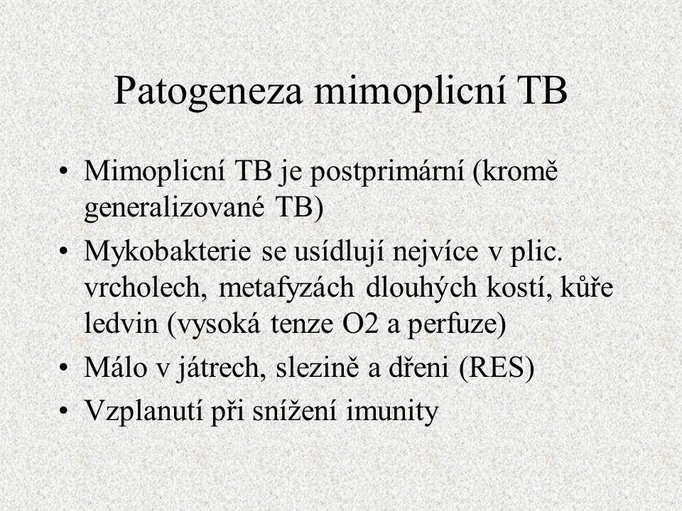 Patogeneza mimoplicní TB Mimoplicní TB je postprimární (kromě generalizované TB) Mykobakterie se usídlují nejvíce v plic.