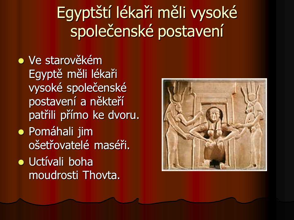 Egyptští lékaři měli vysoké společenské postavení Ve starověkém Egyptě měli lékaři vysoké společenské postavení a někteří patřili přímo ke dvoru.