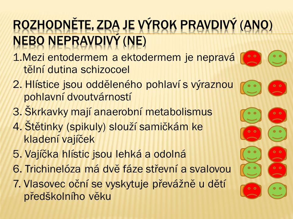 1.Mezi entodermem a ektodermem je nepravá tělní dutina schizocoel 2.