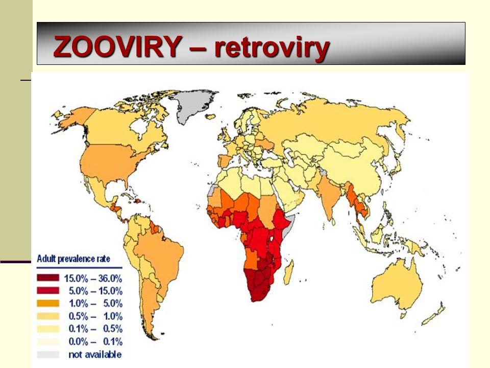 ZOOVIRY – retroviry retroviry – umí přepsat RNA do DNA onkogenní viry HIV = Human Immunodeficiency Virus nakažení HIV akutní fáze infekce klidová fáze