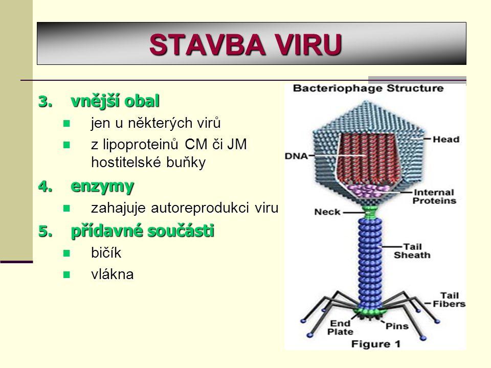 3. v nější obal jen u některých virů z lipoproteinů CM či JM hostitelské buňky 4. e nzymy zahajuje autoreprodukci viru 5. p řídavné součásti bičík vlá