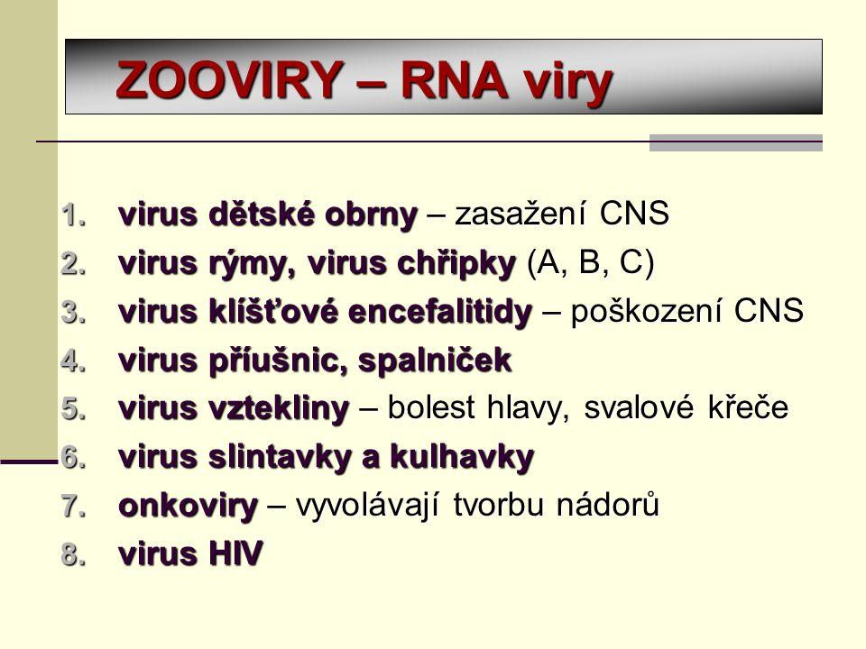 ZOOVIRY – RNA viry 1. virus dětské obrny – zasažení CNS 2.