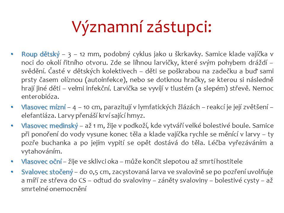 Háďátko řepné Obr.2: http://www.biolib.cz/en/image/id83119/ Háďátko pšeničné Obr.