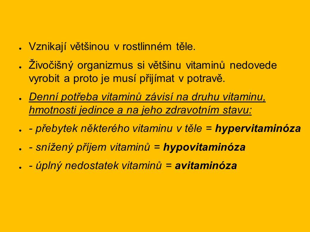 Rozdělení vitaminů: 1/ Vitaminy rozpustné ve vodě ● Vitaminy B, C, H ● 2/ Vitaminy rozpustné v tucích ● Vitaminy A, D, E, K