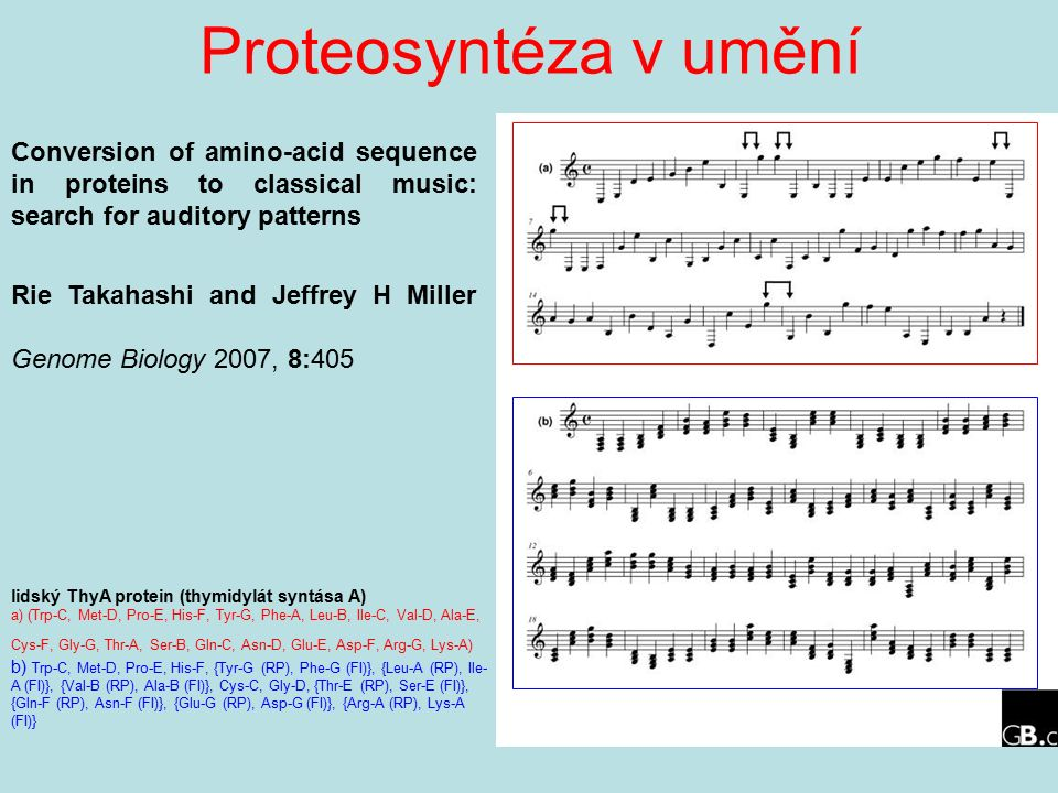 Proteosyntéza v umění lidský ThyA protein (thymidylát syntása A) a) (Trp-C, Met-D, Pro-E, His-F, Tyr-G, Phe-A, Leu-B, Ile-C, Val-D, Ala-E, Cys-F, Gly-G, Thr-A, Ser-B, Gln-C, Asn-D, Glu-E, Asp-F, Arg-G, Lys-A) b) Trp-C, Met-D, Pro-E, His-F, {Tyr-G (RP), Phe-G (FI)}, {Leu-A (RP), Ile- A (FI)}, {Val-B (RP), Ala-B (FI)}, Cys-C, Gly-D, {Thr-E (RP), Ser-E (FI)}, {Gln-F (RP), Asn-F (FI)}, {Glu-G (RP), Asp-G (FI)}, {Arg-A (RP), Lys-A (FI)} Conversion of amino-acid sequence in proteins to classical music: search for auditory patterns Rie Takahashi and Jeffrey H Miller Genome Biology 2007, 8:405