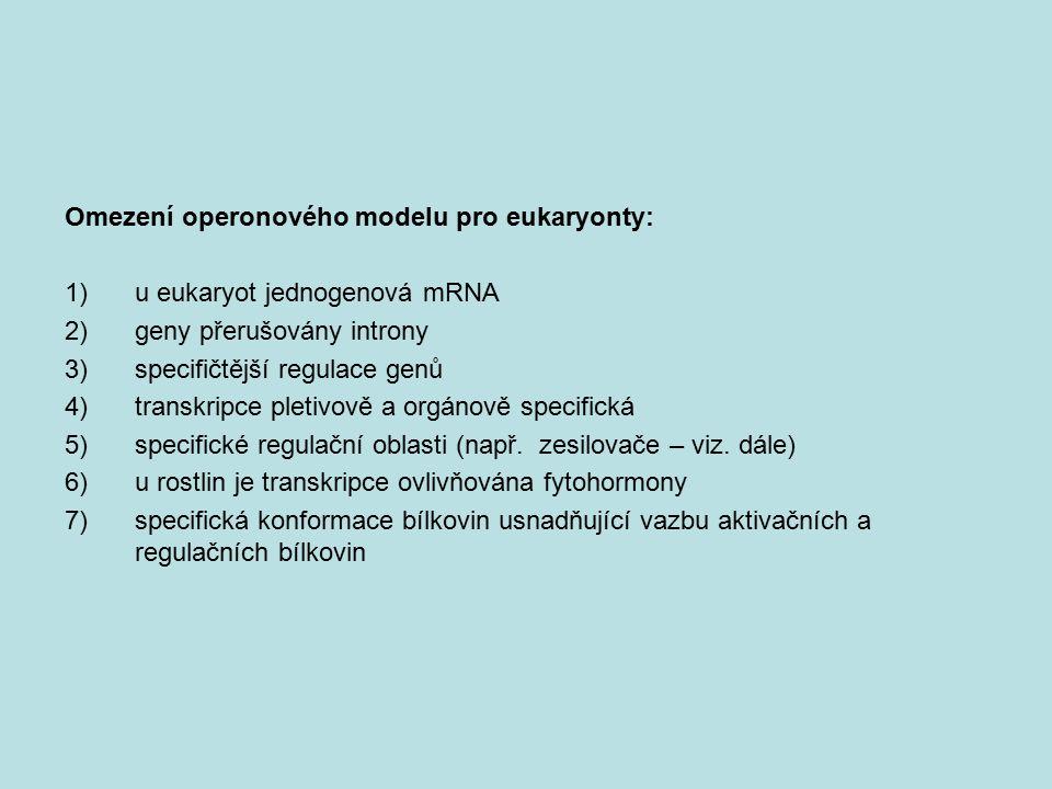 Omezení operonového modelu pro eukaryonty: 1)u eukaryot jednogenová mRNA 2)geny přerušovány introny 3)specifičtější regulace genů 4)transkripce pletiv