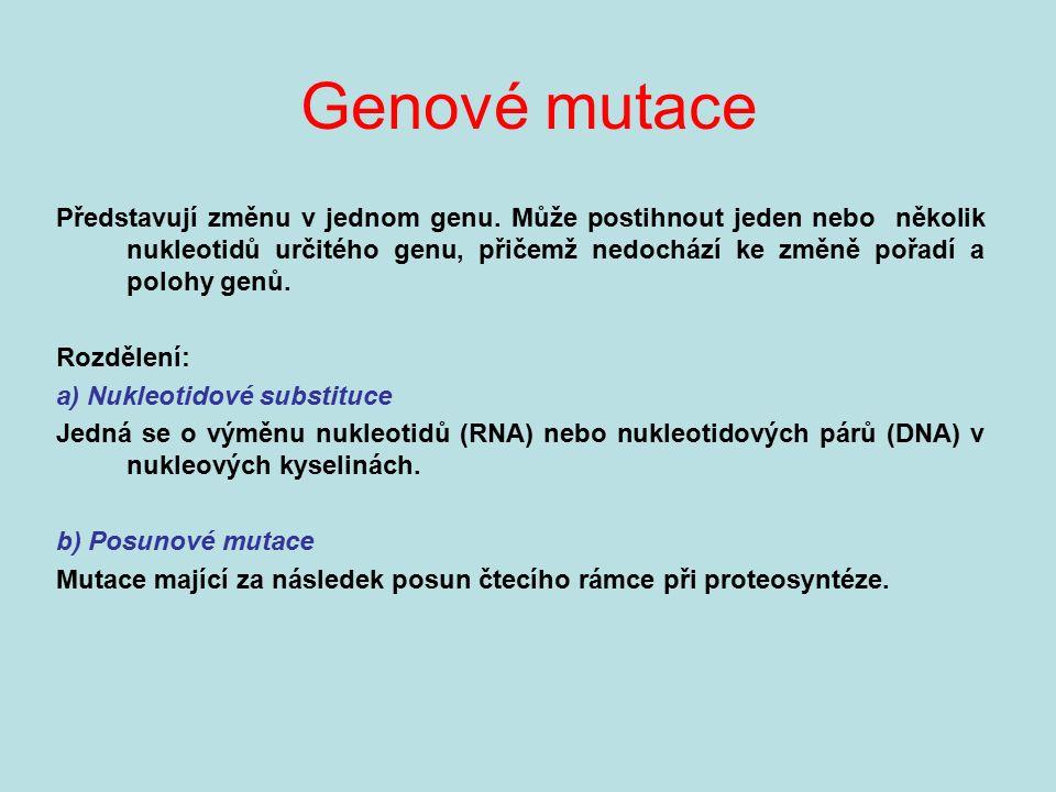 Genové mutace Představují změnu v jednom genu. Může postihnout jeden nebo několik nukleotidů určitého genu, přičemž nedochází ke změně pořadí a polohy