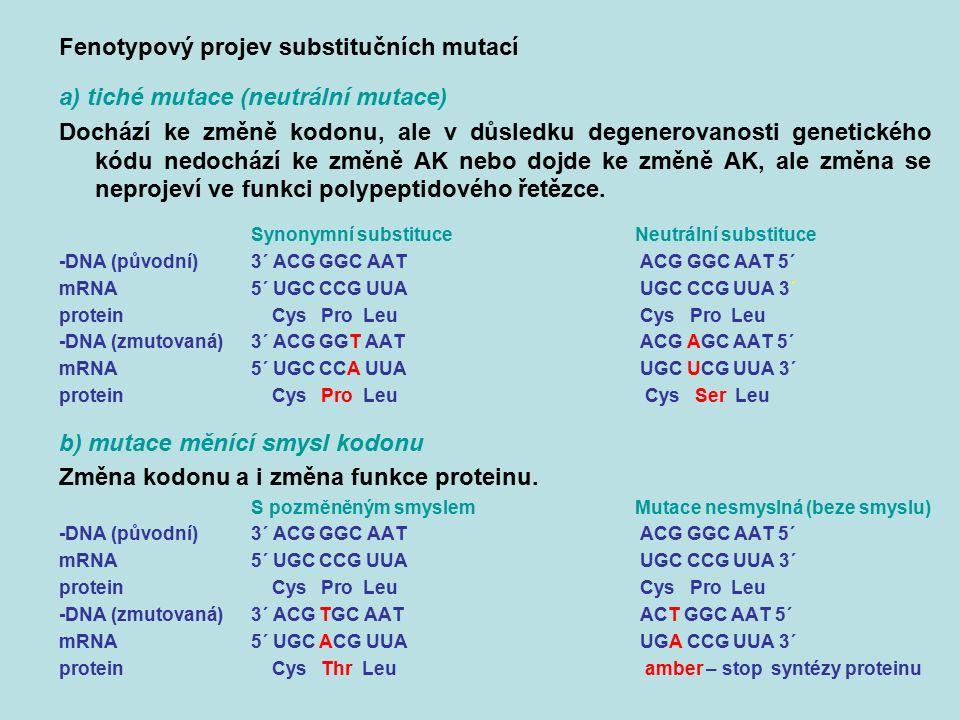 Fenotypový projev substitučních mutací a) tiché mutace (neutrální mutace) Dochází ke změně kodonu, ale v důsledku degenerovanosti genetického kódu ned