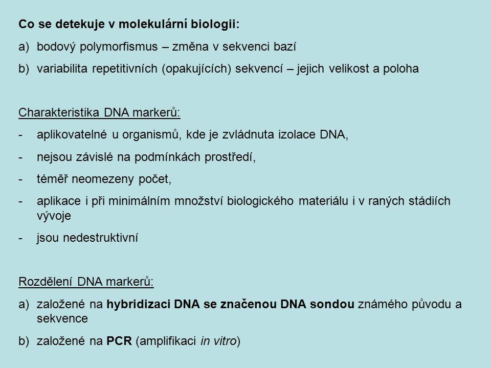 Co se detekuje v molekulární biologii: a)bodový polymorfismus – změna v sekvenci bazí b)variabilita repetitivních (opakujících) sekvencí – jejich veli