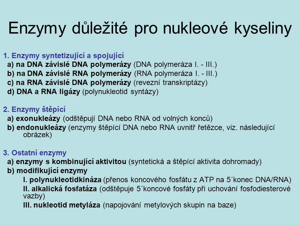 Enzymy důležité pro nukleové kyseliny 1. Enzymy syntetizující a spojující a) na DNA závislé DNA polymerázy (DNA polymeráza I. - III.) b) na DNA závisl