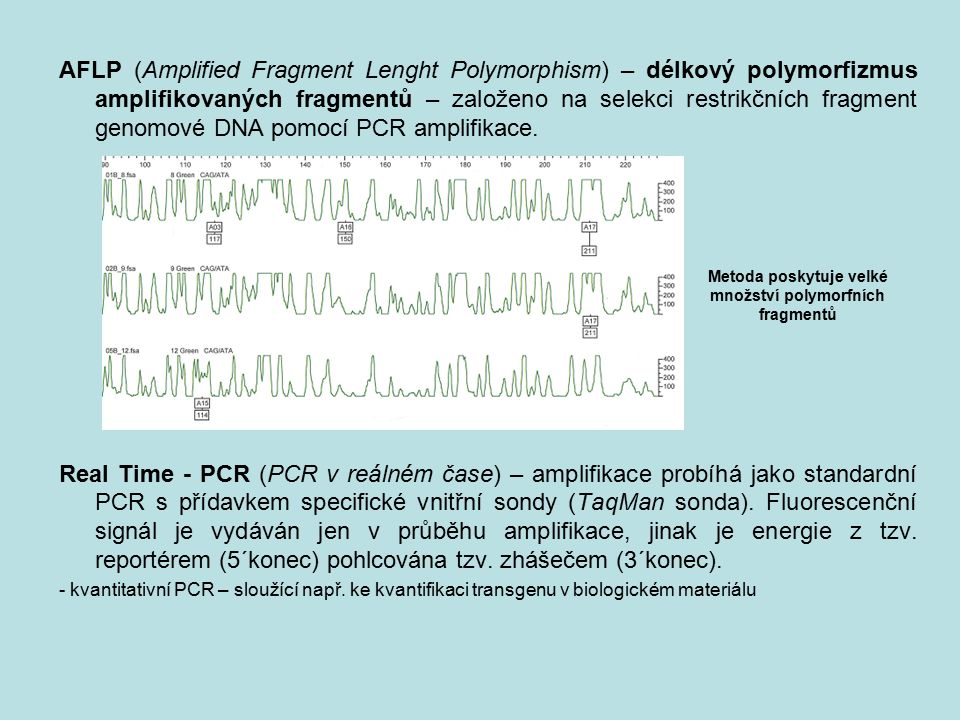 AFLP (Amplified Fragment Lenght Polymorphism) – délkový polymorfizmus amplifikovaných fragmentů – založeno na selekci restrikčních fragment genomové D