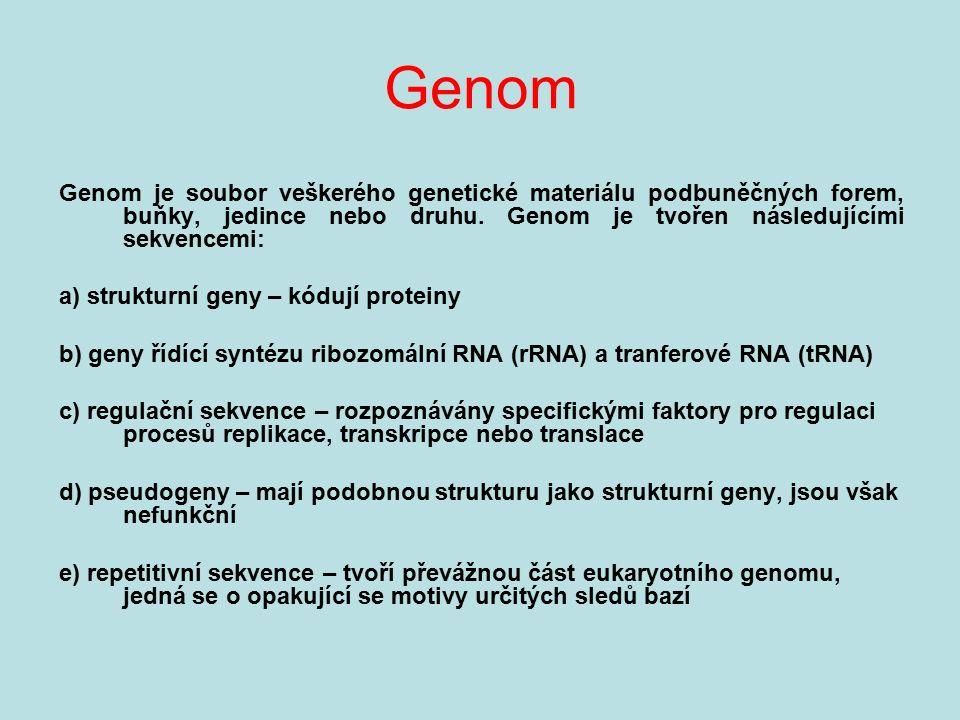 Genom Genom je soubor veškerého genetické materiálu podbuněčných forem, buňky, jedince nebo druhu. Genom je tvořen následujícími sekvencemi: a) strukt