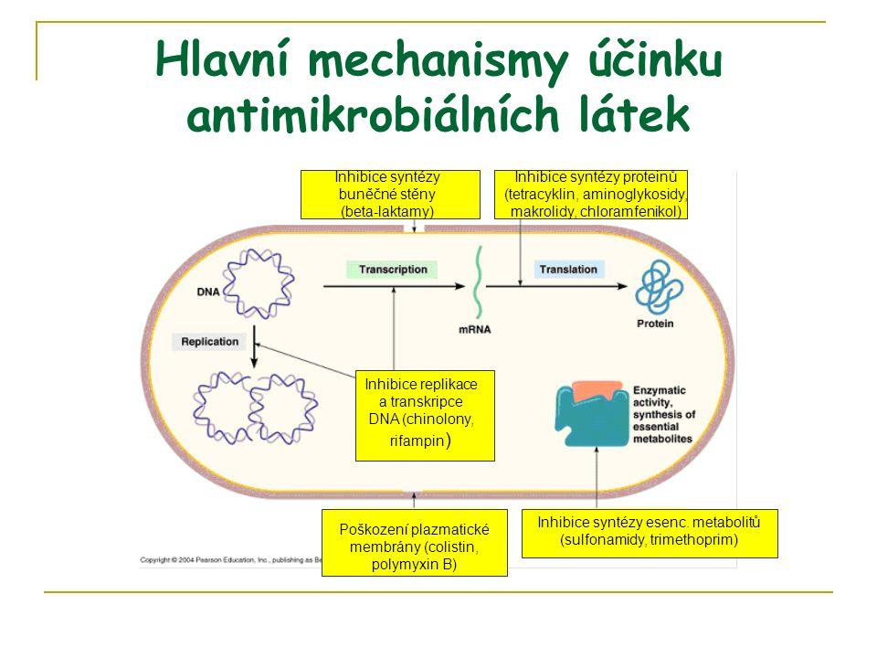 Hlavní mechanismy účinku antimikrobiálních látek Inhibice syntézy buněčné stěny (beta-laktamy) Inhibice syntézy proteinů (tetracyklin, aminoglykosidy, makrolidy, chloramfenikol) Poškození plazmatické membrány (colistin, polymyxin B) Inhibice syntézy esenc.