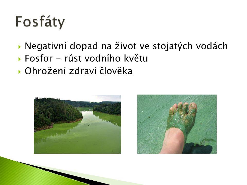  Negativní dopad na život ve stojatých vodách  Fosfor - růst vodního květu  Ohrožení zdraví člověka