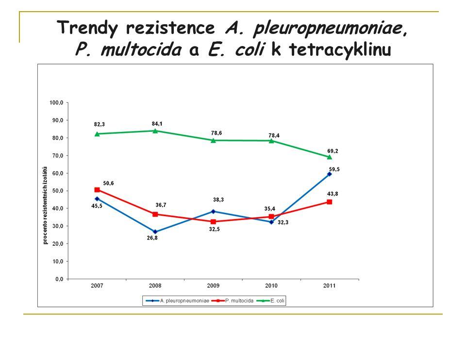 Trendy rezistence A. pleuropneumoniae, P. multocida a E. coli k tetracyklinu