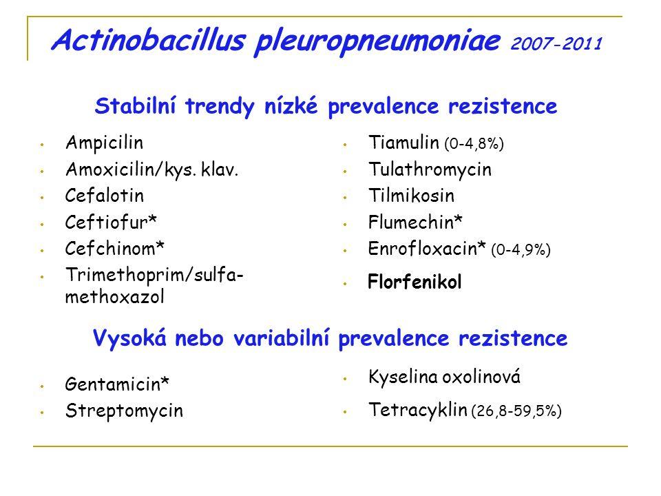 Pasteurella multocida 2007-2011 Stabilní trendy nízké prevalence rezistence Vysoká nebo variabilní prevalence rezistence 2007-2011 Cefalotin Ceftiofur* Cefchinom* Tulathromycin Tetracyklin (32,5-50,6%) Gentamicin* Streptomycin 2008-2011 Amoxicilin/kys.