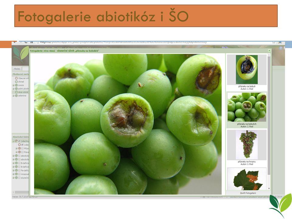 Fotogalerie abiotikóz i ŠO