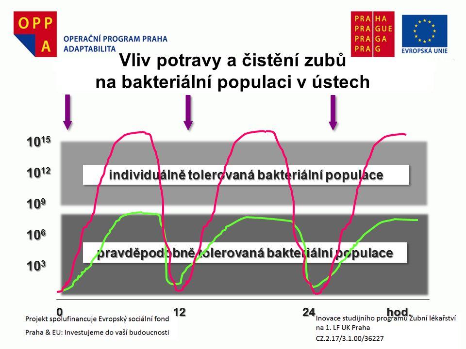 individuálně tolerovaná bakteriální populace 10 15 10 12 10 9 10 6 10 3 Vliv potravy a čistění zubů na bakteriální populaci v ústech 0 12 24 hod.