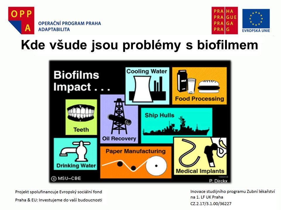 Kde všude jsou problémy s biofilmem