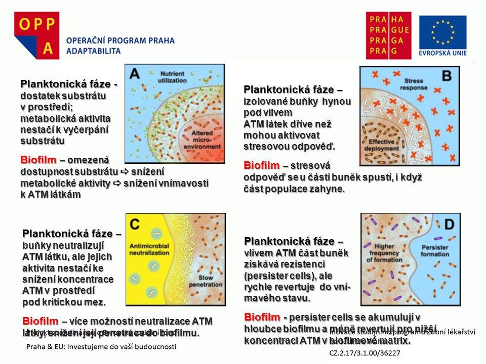 Planktonická fáze – izolované buňky hynou pod vlivem ATM látek dříve než mohou aktivovat stresovou odpověď.