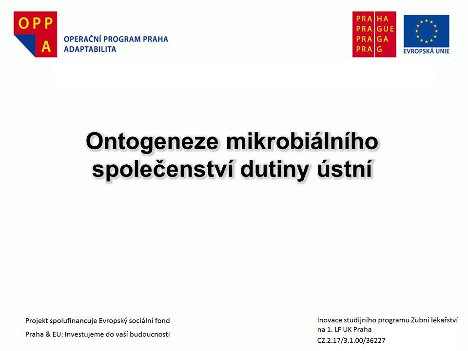 orální hygiena stop čistěníčistění čistěníčistění Ontogeneze ústního mikrobiálního ekosystému II.