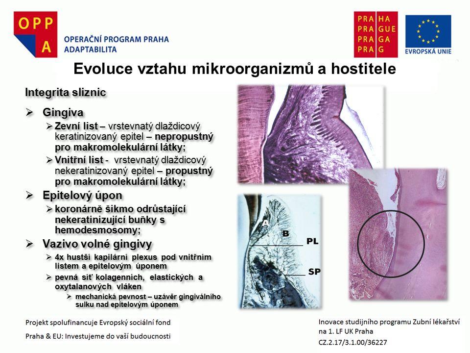 Souhrn Společný vývoj rezidentního mikrobiomu a orálního biotopu hostitele na principu tolerance a rovnováhySpolečný vývoj rezidentního mikrobiomu a orálního biotopu hostitele na principu tolerance a rovnováhy Mikrobiom zahrnuje adherující (plak – biofilm) a planktonickou fáziMikrobiom zahrnuje adherující (plak – biofilm) a planktonickou fázi Akvizice rezidentní flóry začíná již v časném dětském věku, donorem jsou blízcí dospělíAkvizice rezidentní flóry začíná již v časném dětském věku, donorem jsou blízcí dospělí Scénář rekonstituce adherující fáze je obdobný její výstavbě v časné ontogeneziScénář rekonstituce adherující fáze je obdobný její výstavbě v časné ontogenezi Faktory prostředí ovlivňují složení a vlastnosti orálního mikrobiomu, čímž se demaskuje jeho patogenní potenciál.Faktory prostředí ovlivňují složení a vlastnosti orálního mikrobiomu, čímž se demaskuje jeho patogenní potenciál.