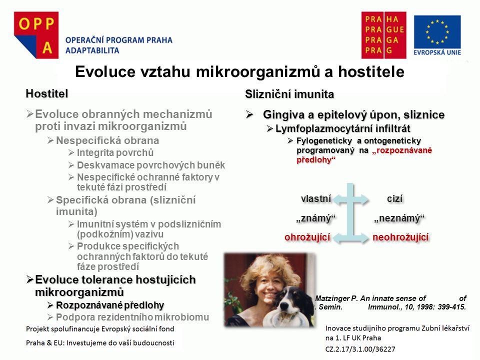 """Slizniční imunita  Gingiva a epitelový úpon, sliznice  Lymfoplazmocytární infiltrát  Fylogeneticky a ontogeneticky programovaný na """"rozpoznávané předlohy Matzinger P."""