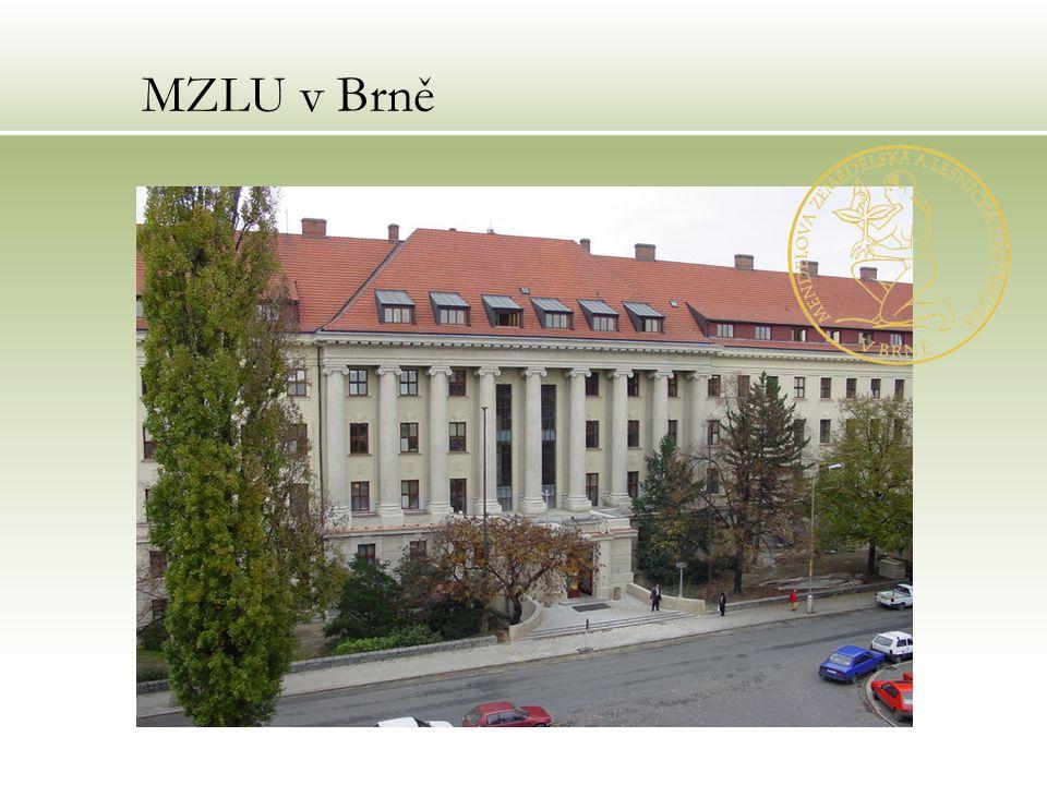 MZLU v Brně