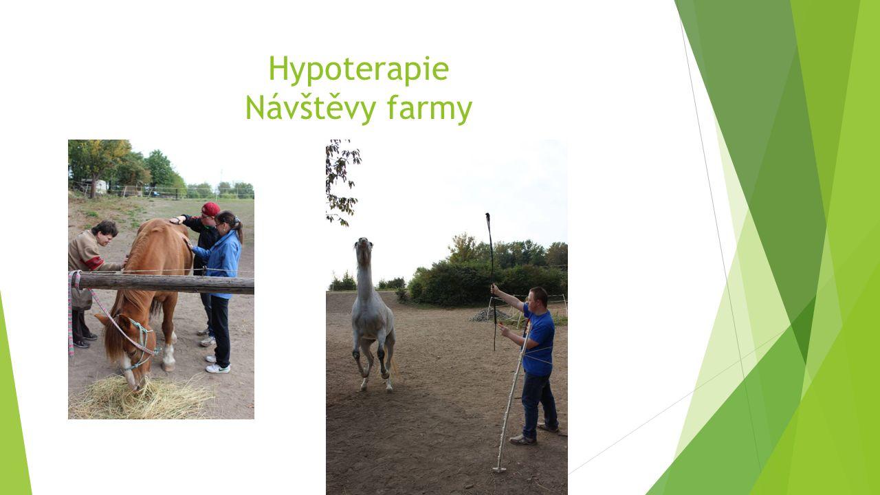 Hypoterapie Návštěvy farmy