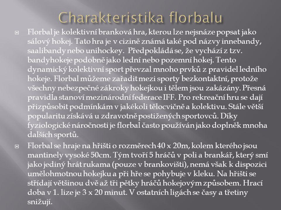  Florbal je kolektivní branková hra, kterou lze nejsnáze popsat jako sálový hokej. Tato hra je v cizině známá také pod názvy innebandy, saalibandy ne