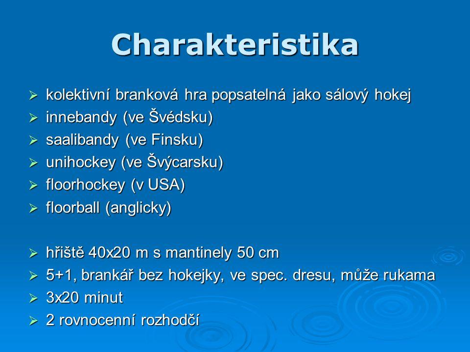 Charakteristika  kolektivní branková hra popsatelná jako sálový hokej  innebandy (ve Švédsku)  saalibandy (ve Finsku)  unihockey (ve Švýcarsku)  floorhockey (v USA)  floorball (anglicky)  hřiště 40x20 m s mantinely 50 cm  5+1, brankář bez hokejky, ve spec.