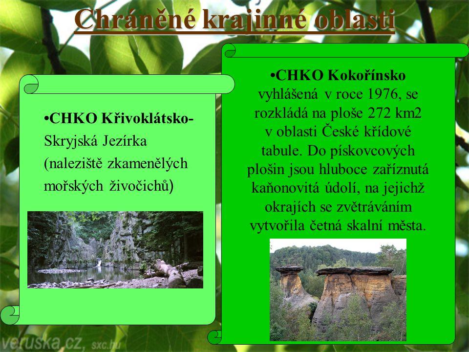 Chráněné krajinné oblasti CHKO Kokořínsko vyhlášená v roce 1976, se rozkládá na ploše 272 km2 v oblasti České křídové tabule.