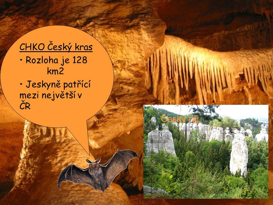 CHKO Český kras Rozloha je 128 km2 Jeskyně patřící mezi největší v ČR Český ráj
