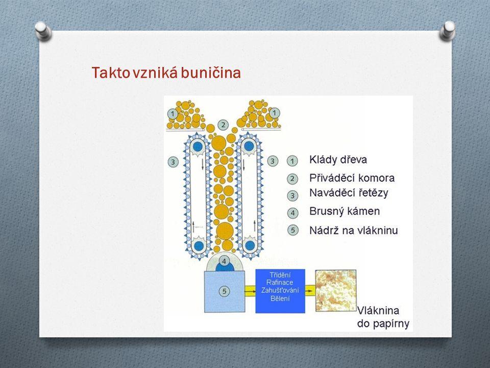 Takto vzniká buničina