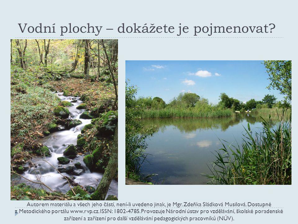 správně: potok a rybník Autorem materiálu a všech jeho částí, není-li uvedeno jinak, je Mgr.