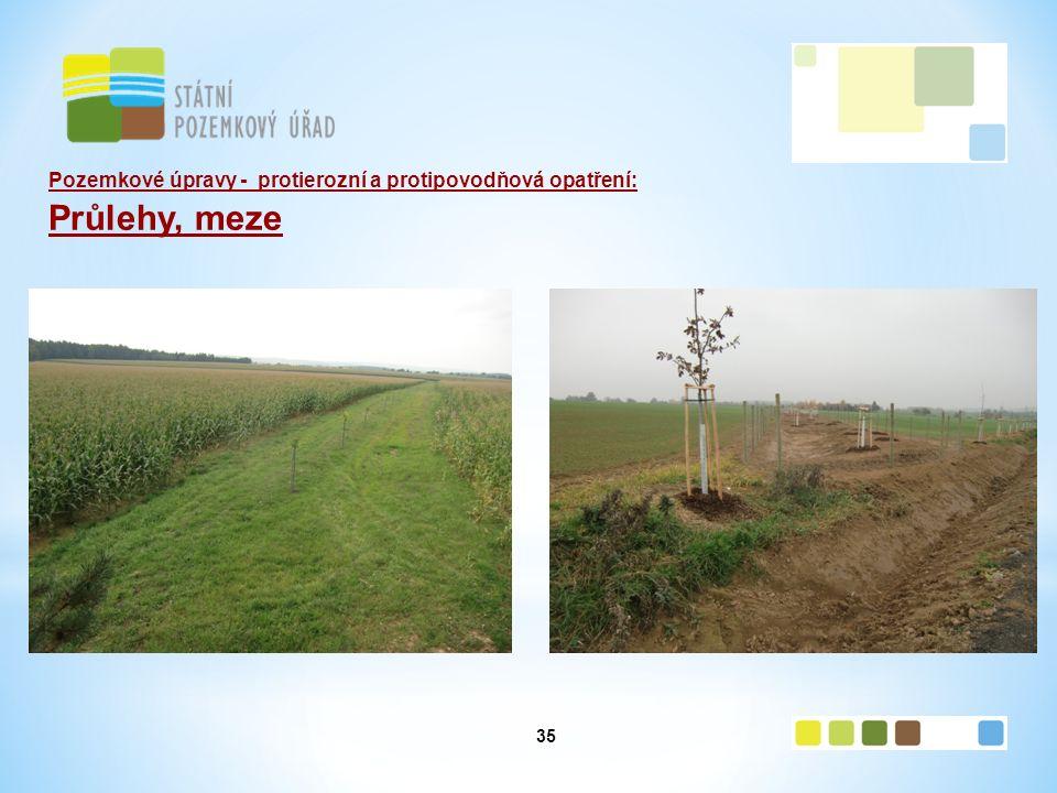 35 Pozemkové úpravy - protierozní a protipovodňová opatření: Průlehy, meze