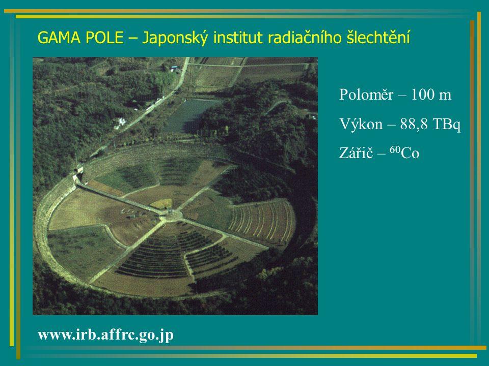 GAMA POLE – Japonský institut radiačního šlechtění www.irb.affrc.go.jp Poloměr – 100 m Výkon – 88,8 TBq Zářič – 60 Co