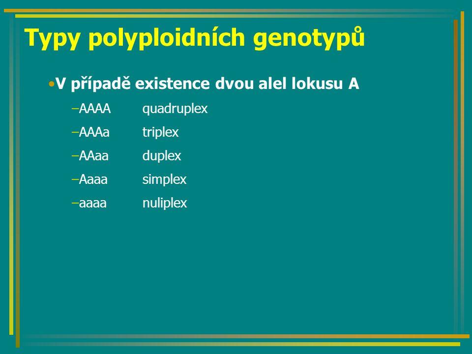Typy polyploidních genotypů V případě existence dvou alel lokusu A –AAAAquadruplex –AAAatriplex –AAaaduplex –Aaaasimplex –aaaanuliplex